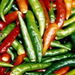 Pepper, Hot - Anaheim Chili-Pepper, Hot - Anaheim Chili